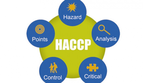 Call for Expressions of Interest (EOI) for HACCP Certification support for Shefa based businesses