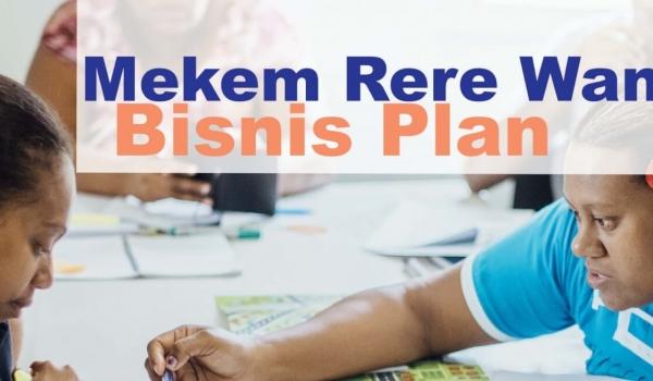 NEW: Business Plan Development Program